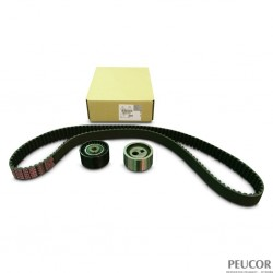 Kit Correa Distribucion  DW8 1.9  - 207 , Partner, Berlingo, XSARA